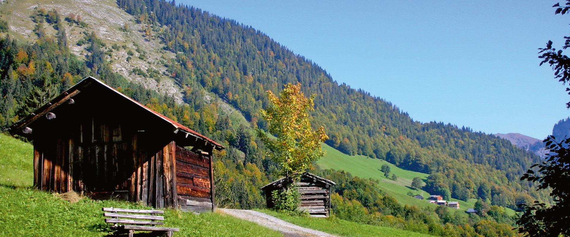 Hütte im Auer Ried