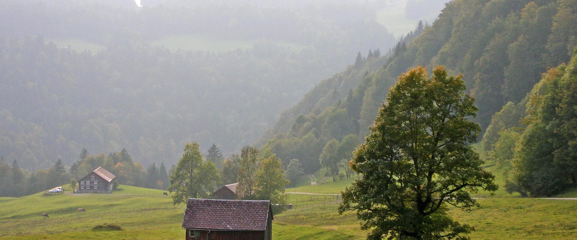 Hinterbergalpen in Hittisau