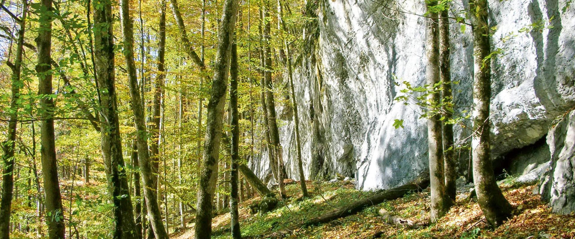 Höhlenpark in Bezau