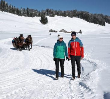HochhŠderich Winterwanderung