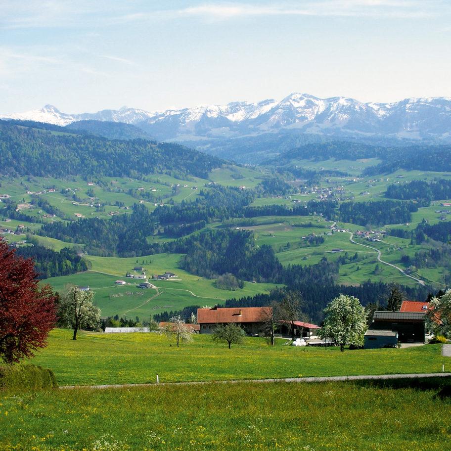 Sulzberg | Panoramarundweg Hochsträss
