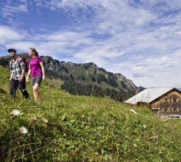 Wandern in der Naehe der Alpe Sattelegg in Au Adolf Bereuter - Bregenzerwald Tourismus
