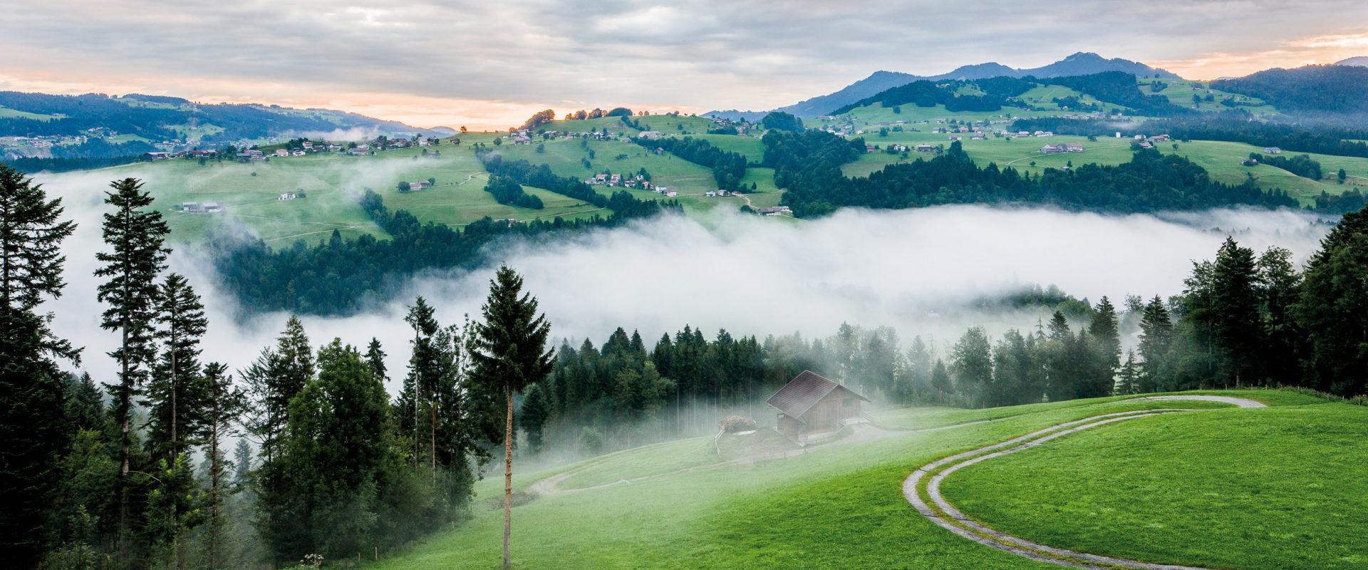 Bregenzerwald bei Müselbach © Walser-image.com / Vorarlberg Tourismus