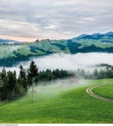 Bregenzerwald Medientext - Sommer 2017