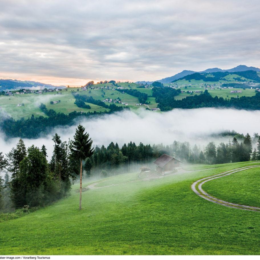 Lebensraum Bregenzerwald
