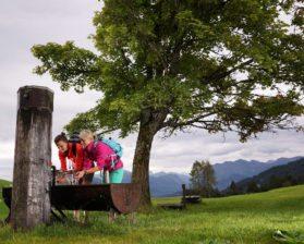 Kulinarisch Wandern - Schwarzenberg © Ludwig Berchtold / Bregenzerwald Tourismus
