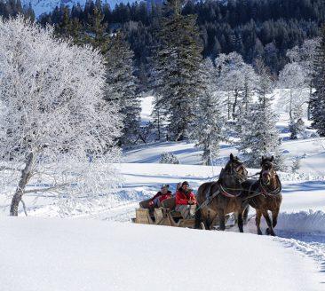 Pferdeschlitten © Adolf Bereuter / Bregenzerwald Tourismus