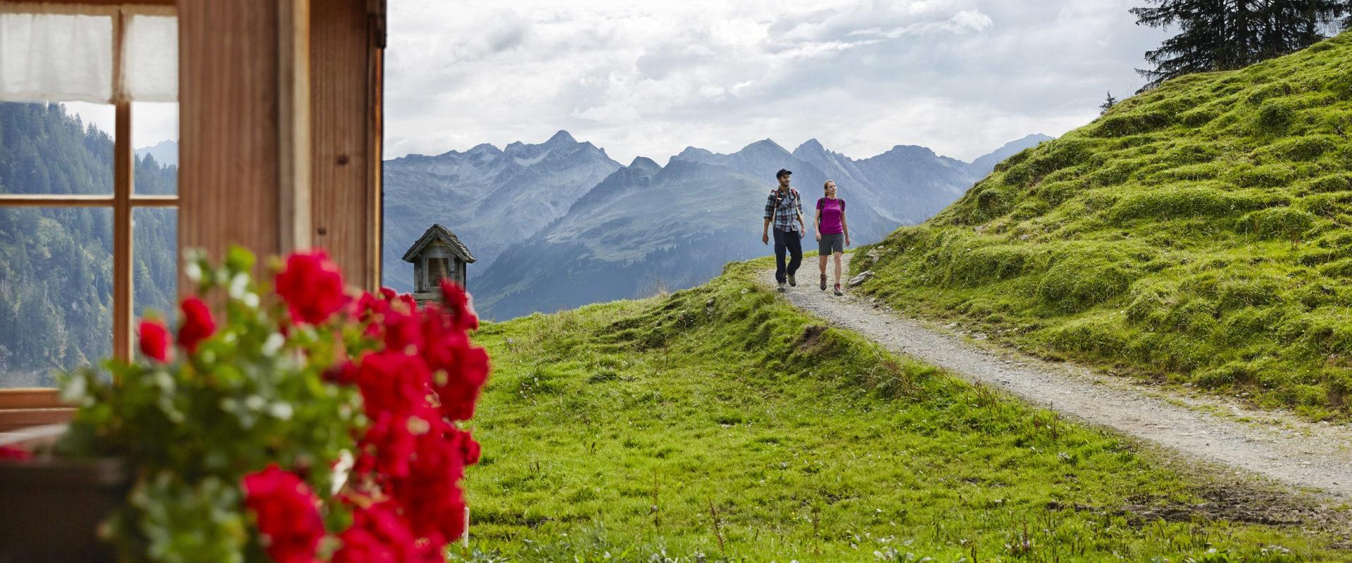 Wandern_Alpe Sattelegg © Adolf Bereuter / Bregenzerwald Tourismus