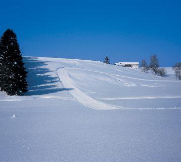 Winterwandern © Tiefenthaler / Bregenzerwald Tourismus