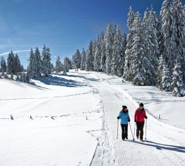 Winterwandern auf dem  Brüggelekopf © Ludwig Berchtold / Bregenzerwald Tourismus