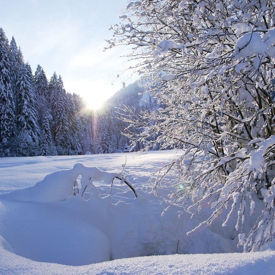 Winterwandern in Sibratsgfaell © Friedrich Böhringer / Bregenzerwald Tourismus