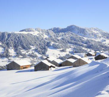 Winterwandern Schetteregg © Hubce / Tourismusverein Egg