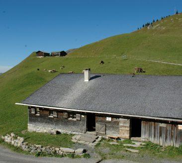 Alpmuseum und Buehl