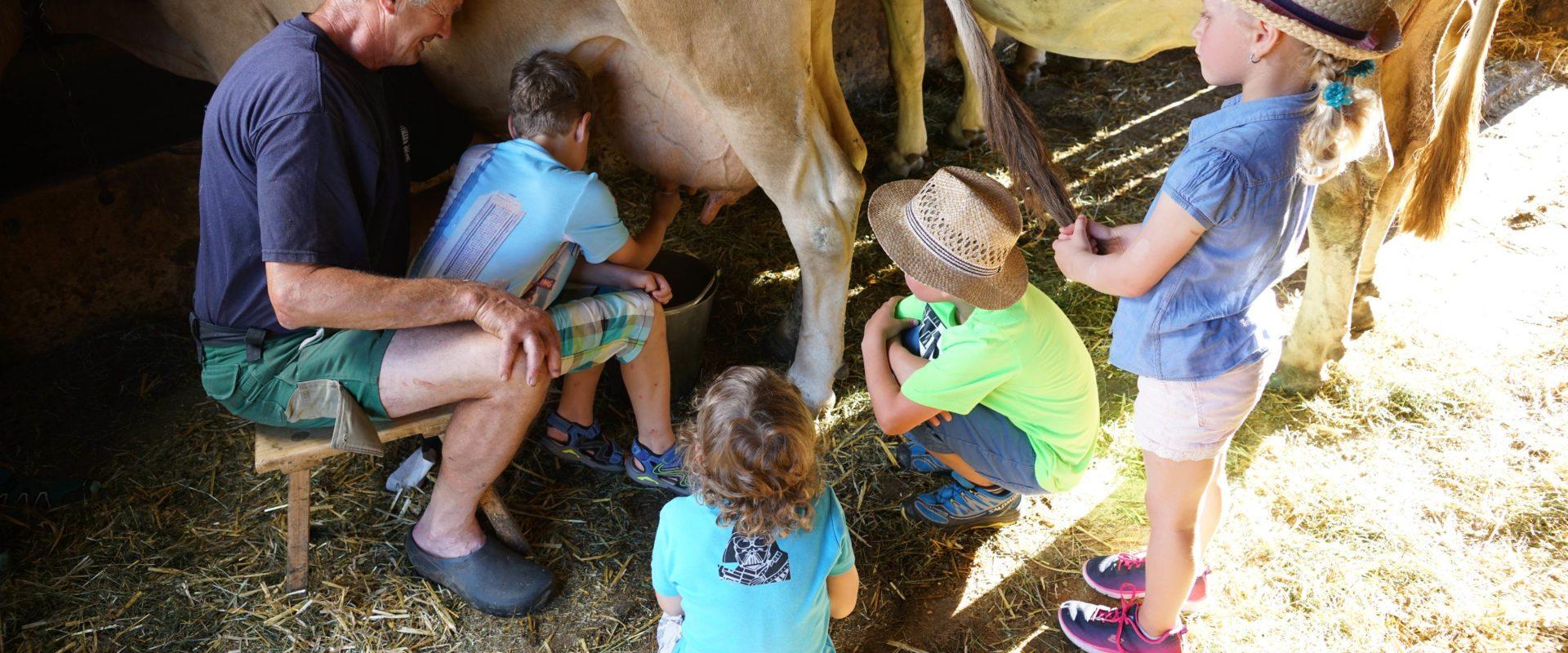 Kinderprogramm_Au-Schoppernau Tourismus (3)