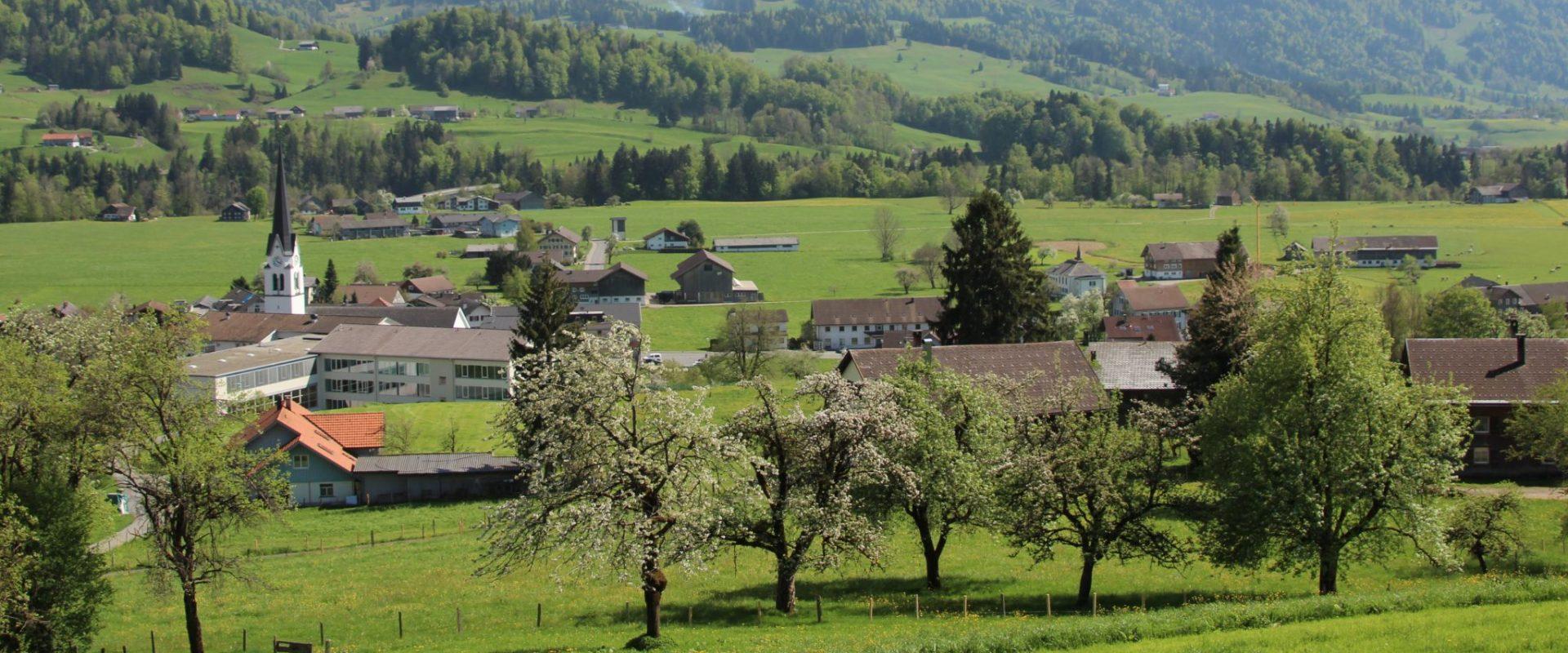 Lingenau Sommer_Tanja Steurer_Lingenau Tourismus