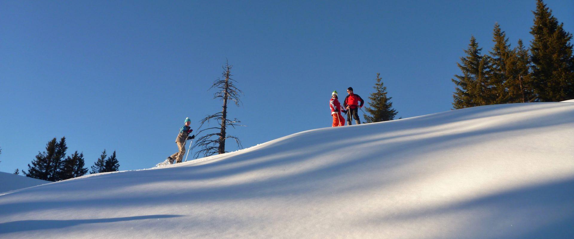 Panorama Schneeschuhtour mit Moses_Markus Moosbrugger (2)