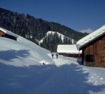 Rodeln Vorsäß Boden_Au-Schoppernau Tourismus