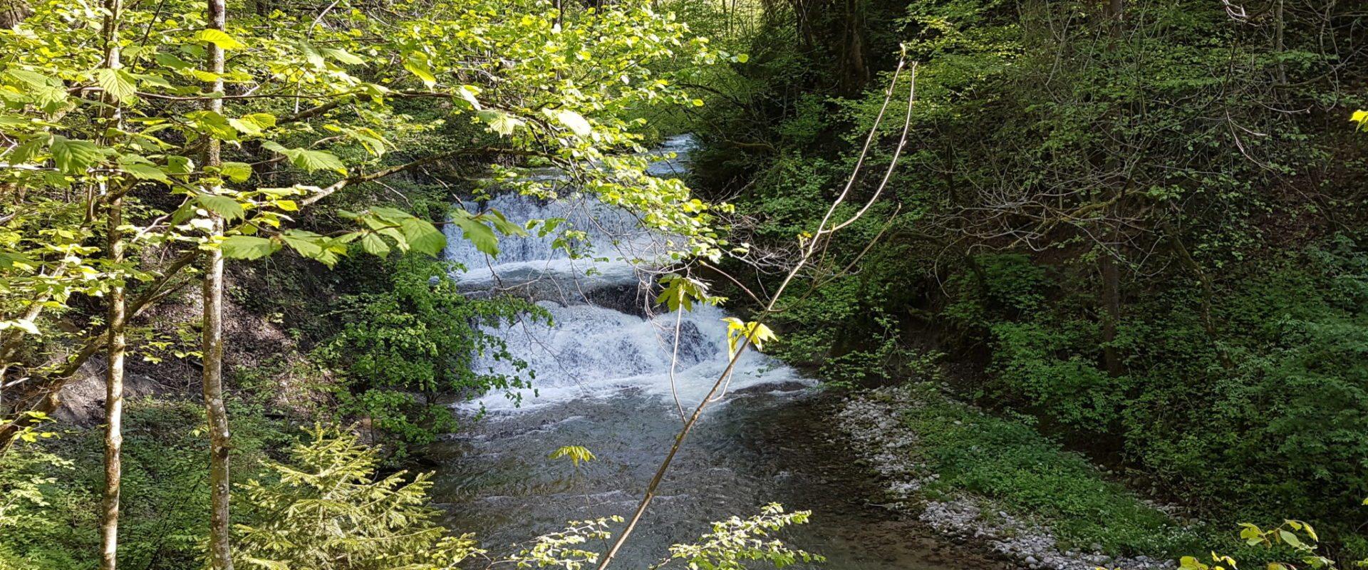 Wasserfälle in Andelsbuch © Cornelia Kriegner (1)