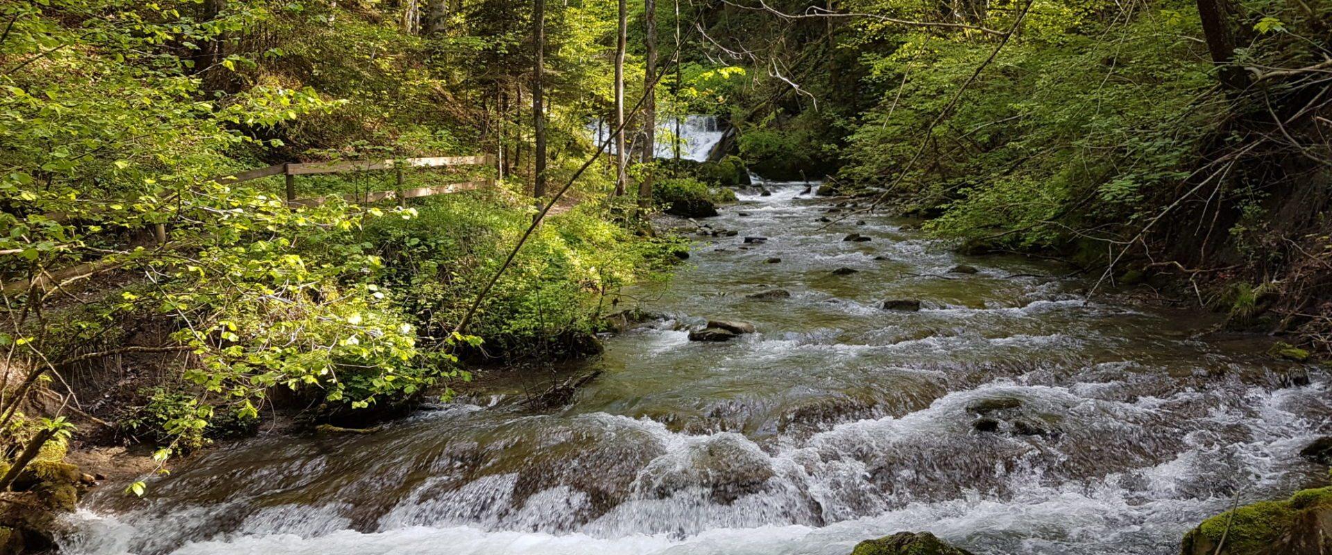 Wasserfälle in Andelsbuch © Cornelia Kriegner (3)