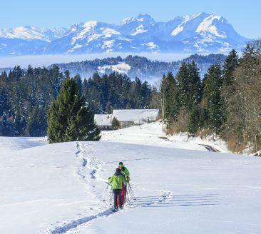 Schneeschuhwandern Sulzberg