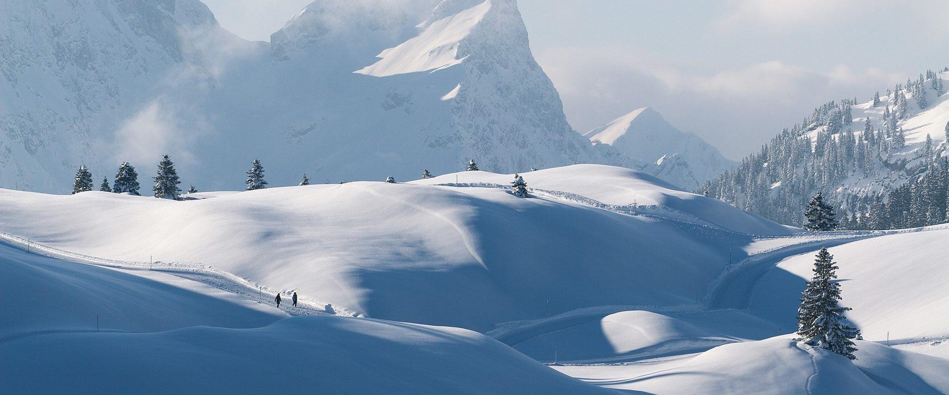 Winterwandern,Landschaften,Snowworld,Warth,Schröcken,Arlberg,Austria