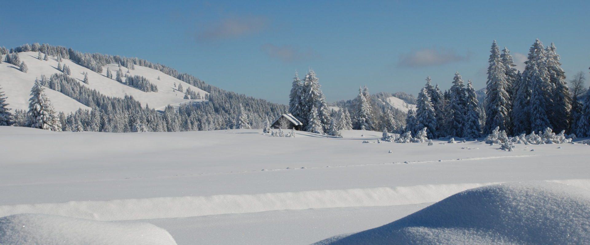 Winterwandern am Hochhäderich © Jakob Faißt / Bregenzerwald Tourismus