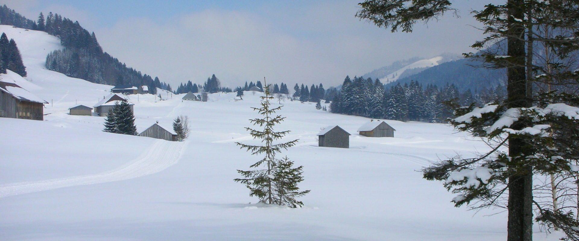 Winterwandern Hittisau-Sippersegg © Rudolf Berchtel / Bregenzerwald Tourismus GmbH