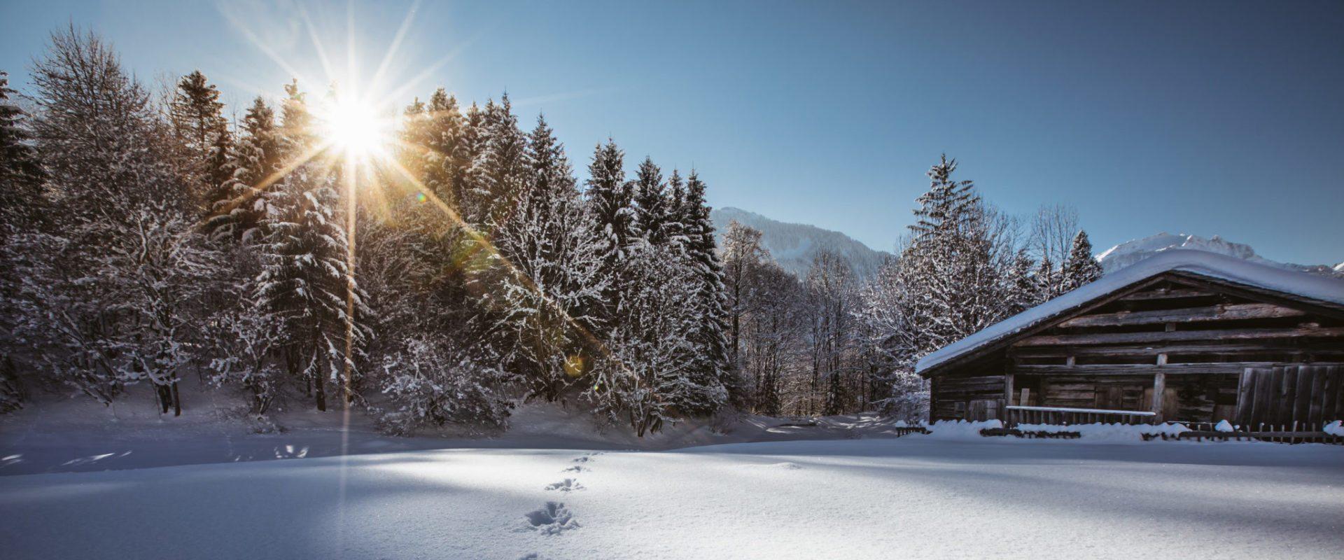 Wintertime in Bregenzerwald, Austria