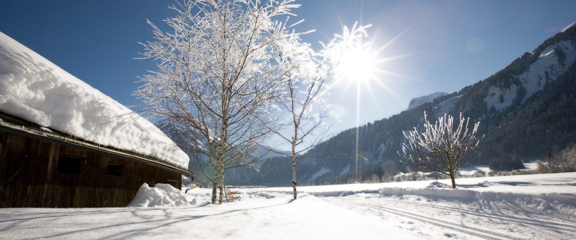 Au-Schoppernau im Winter (c) Christine Kaufmann - Au-Schoppernau Tourismus