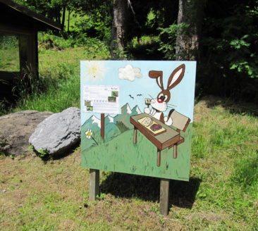 bunny_Karl Huber_Damüls-Faschina Tourismus (5)