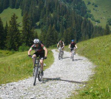 mountainbike_bikeguide bregenzerwald (16)