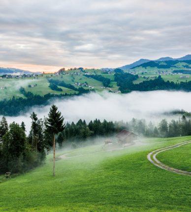 Bregenzerwald MT - Summer 2019