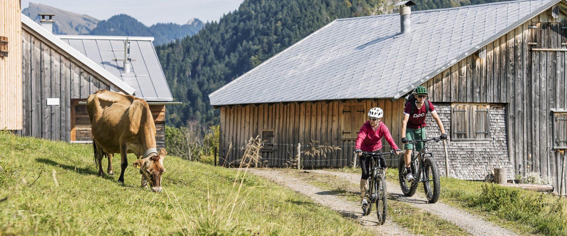 Tipps für Mountainbiker