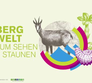 Ausstellung: Bergwelt zum Sehen und Staunen