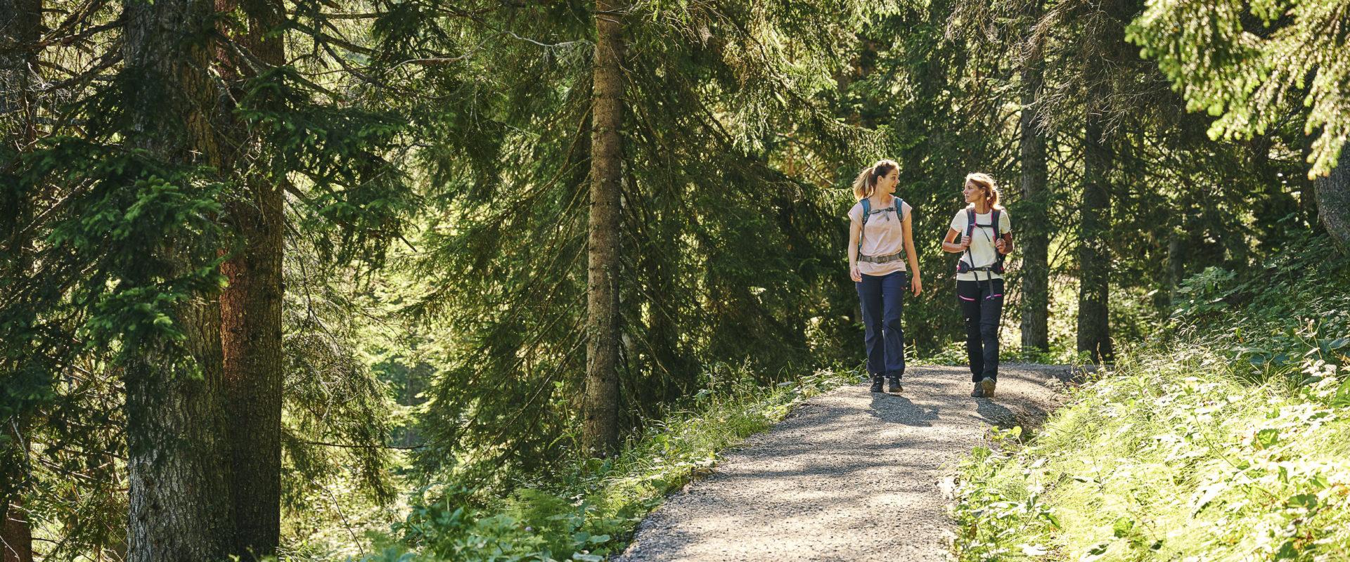 Wandern zwischen Bergstation Mellaubahn und Alpe Kanis © Alex Kaiser undefined