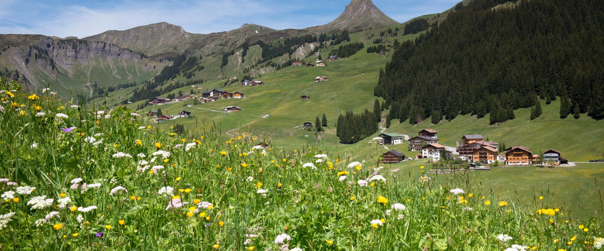 Landschaft Damüls © Huber Images - Damüls-Faschina Tourismus