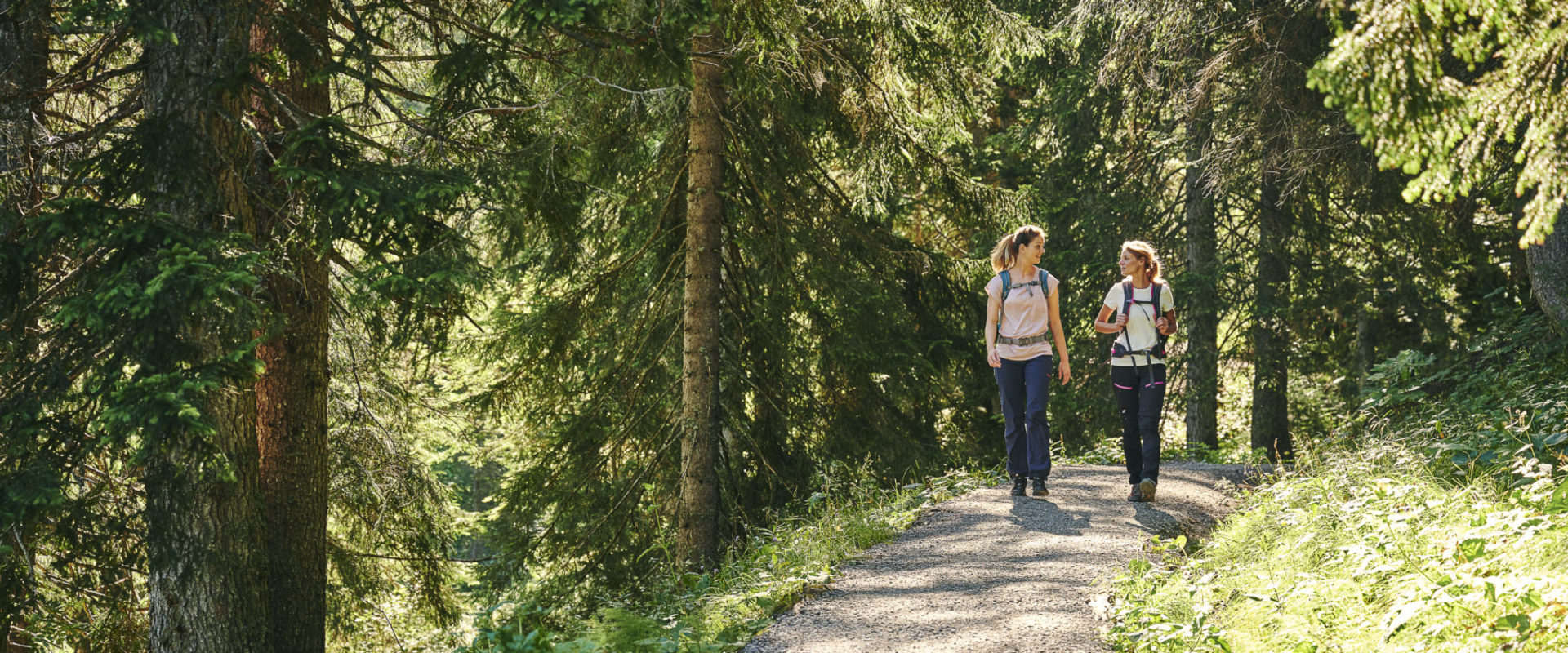 Kulinarisch Wandern - Lingenau-Hittisau