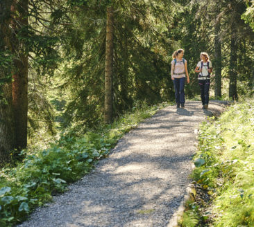 Culinary hike – Lingenau-Hittisau