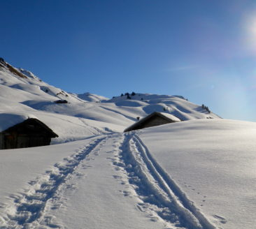 Alpine – Passion: Geführte Winterwanderungen