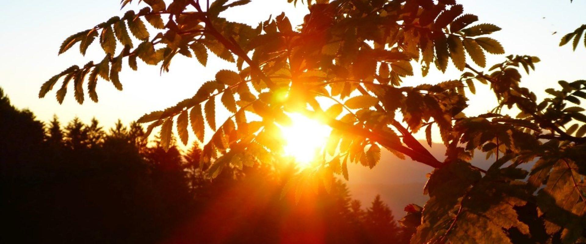 Sonnenaufgang Brüggelekopf in Alberschwende © Karin Hillebrand / Gemeinde Alberschwende
